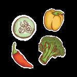 pictogrammes-valeurs-legumes